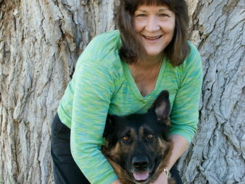 remote energy healing, pet healing, animals