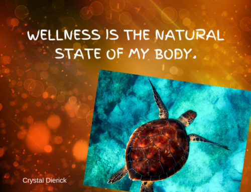 Wellness is Natural